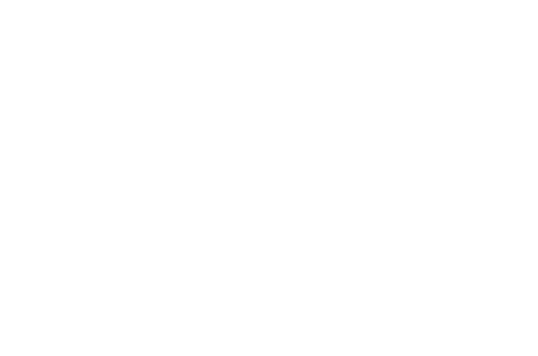 WINNER - Best Narrative Feature - Chain Film Festival 2017