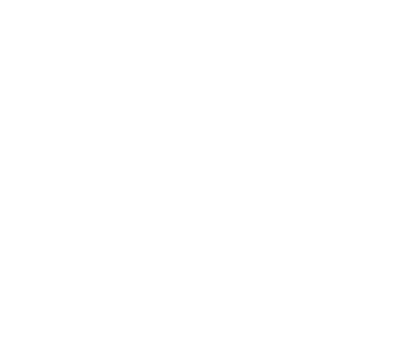 Official Selection - LA Femme International Film Festival 2017