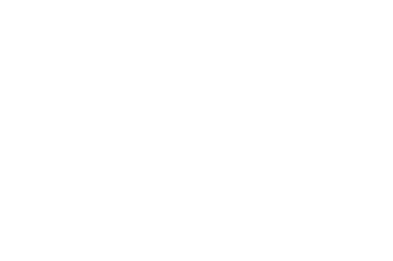 Official Selection - Maryland International Film Festival 2017